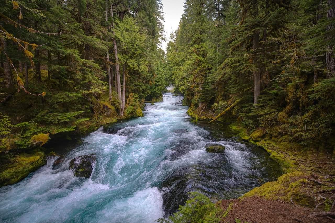 Contoh karangan Pencemaran Sungai